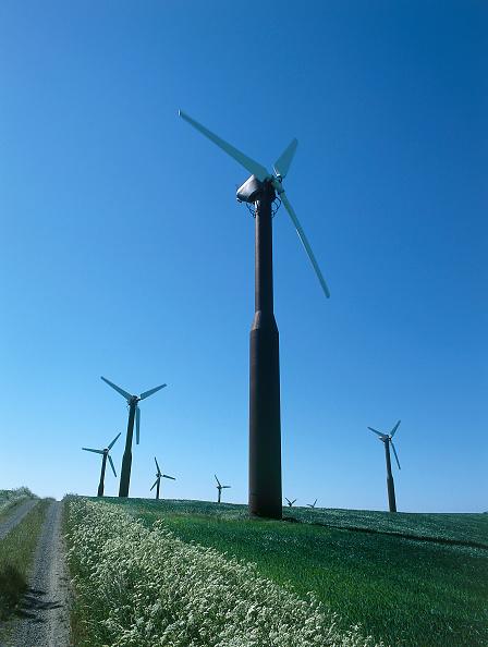 Grass Family「Wind turbines.」:写真・画像(9)[壁紙.com]