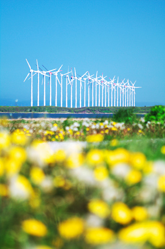 たんぽぽ「Wind Turbines, Hokkaido Prefecture, Japan」:スマホ壁紙(13)