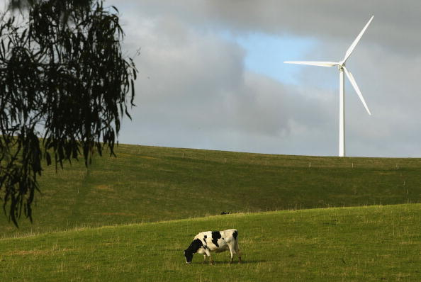 Greenhouse「AUS: Residents Oppose The Development Of Wind Farms In Victoria」:写真・画像(5)[壁紙.com]