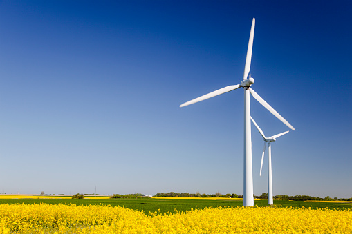 Generator「Wind turbines in yellow field. Sustainable energy. Polarized blue sky.」:スマホ壁紙(10)