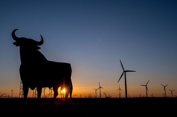 Bull - Animal「New Combined Electricity Project Connect Spain and France」:写真・画像(4)[壁紙.com]