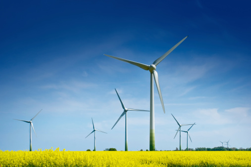 Windmill「Wind Turbines in a Rape Field」:スマホ壁紙(12)