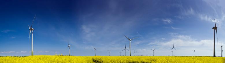 International Biosphere Reserves「Wind Turbines in a Rape Field」:スマホ壁紙(7)