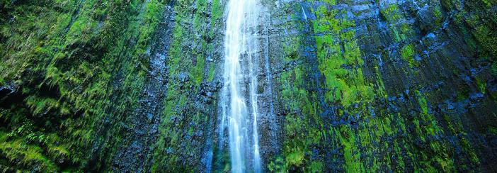 Haleakala National Park「Waimoku Falls on the Pipiwai Trail in Maui, Hawaii.」:スマホ壁紙(19)
