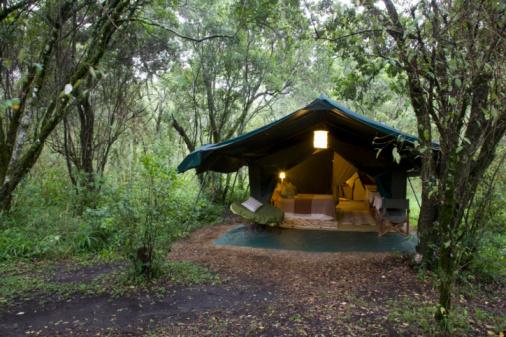 Masai Mara National Reserve「Africa. Kenia. Masai Mara National Reserve.」:スマホ壁紙(9)
