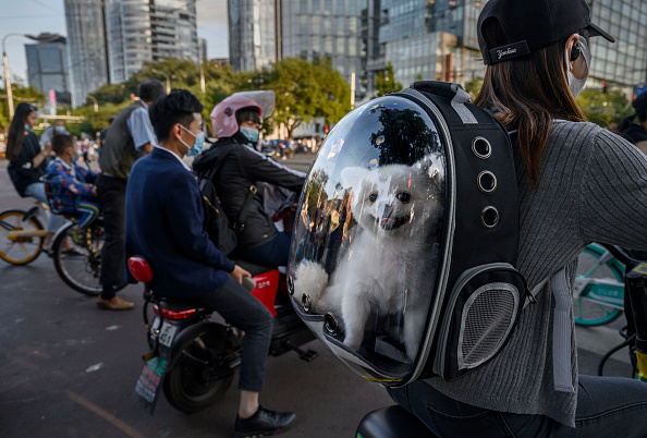 Backpack「China Daily Life Amid Global Pandemic」:写真・画像(4)[壁紙.com]