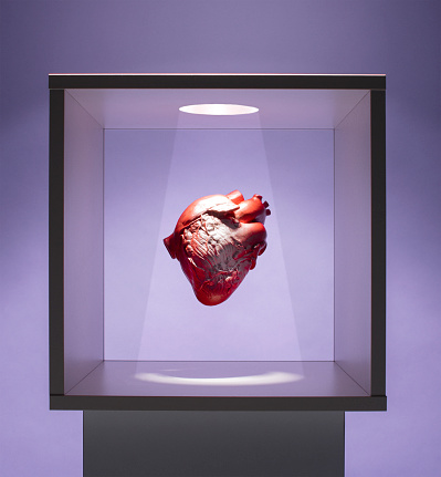 Heart「Human heart model in box」:スマホ壁紙(16)
