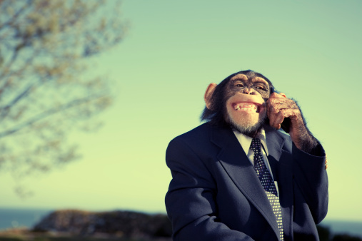 Auto Post Production Filter「Monkey Communication」:スマホ壁紙(14)