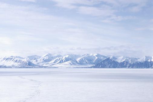 Snow「Bylot Island, NWT, Canada」:スマホ壁紙(3)