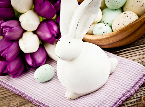 Easter Bunny「Easter Celebration with Rabbit」:スマホ壁紙(3)