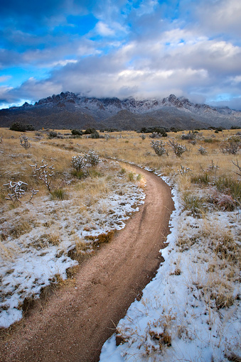 Sandia Mountains「winter hiking path landscape」:スマホ壁紙(14)