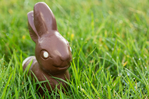 Easter Bunny「Chocolate bunny in the grass」:スマホ壁紙(5)