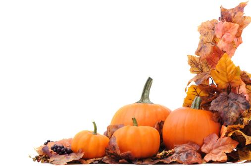 Maple Leaf「Maple tree and pumpkins」:スマホ壁紙(14)