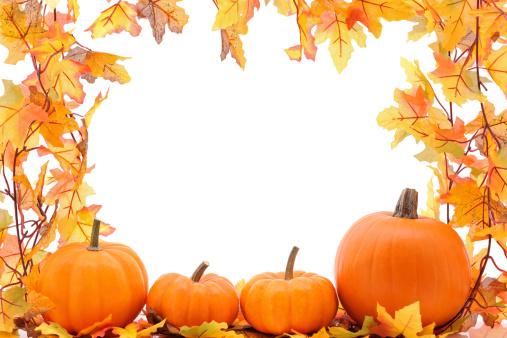Maple Leaf「Maple tree and pumpkins」:スマホ壁紙(15)