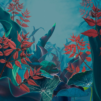 Rainforest「Fairy garden in myst」:スマホ壁紙(4)