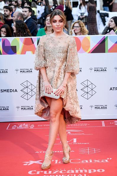シルバーのハンドバッグ「Opening Day - Gala - Malaga Film Festival 2019」:写真・画像(10)[壁紙.com]