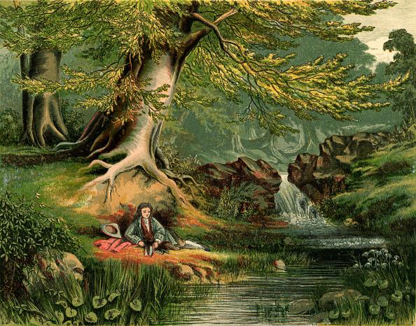 Beech Tree「'Elegy written in a Country Churchyard' by Thomas Gray」:写真・画像(11)[壁紙.com]