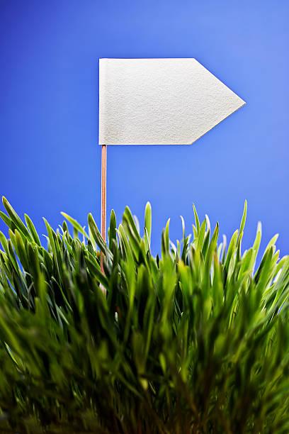 White flag planted in grass:スマホ壁紙(壁紙.com)