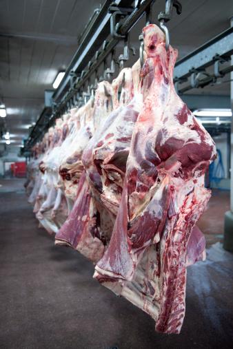ロマンス「Cow Carcasses」:スマホ壁紙(7)