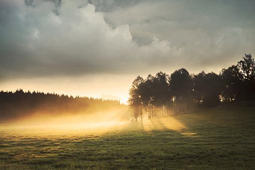 月「Soluppgång över Fält」:スマホ壁紙(12)