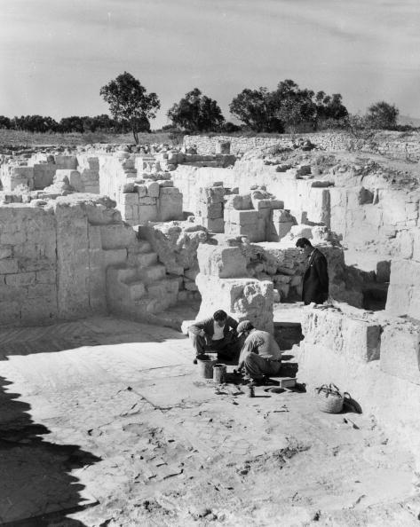 Tiled Floor「Excavations In Cyprus」:写真・画像(11)[壁紙.com]