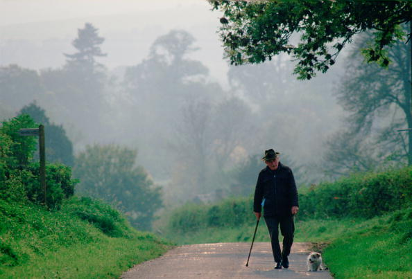 Walking「Old Man In Country Lane with Dog, England」:写真・画像(2)[壁紙.com]