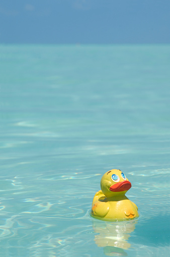 おもちゃのアヒル「Yellow rubber duck in the sea」:スマホ壁紙(7)