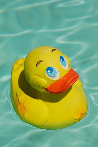 おもちゃのアヒル「Yellow rubber duck swimming in the sea」:スマホ壁紙(8)
