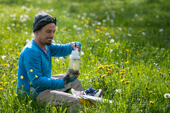 Collection「Scientists Monitor Insect Populations In Southwest Germany」:写真・画像(19)[壁紙.com]