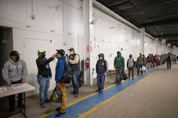 Immigrant Agricultural Workers Critical To U.S. Food Security Amid COVID-19 Outbreak:ニュース(壁紙.com)