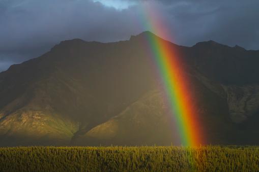 虹「A rainbow shines brightly, east of Palmer in summertime」:スマホ壁紙(13)