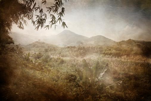 Masterpiece「アジアのジャングル。ベトナムます。セピア調、ヴィンテージの図案化された画像」:スマホ壁紙(10)
