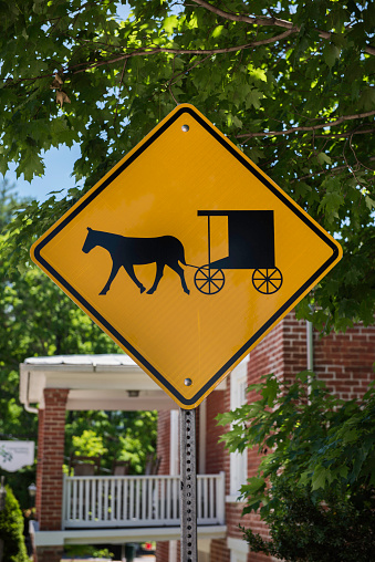 Horse-drawn carriage「Horse and Buggy Crossing Sign, Lexington, Virginia」:スマホ壁紙(1)