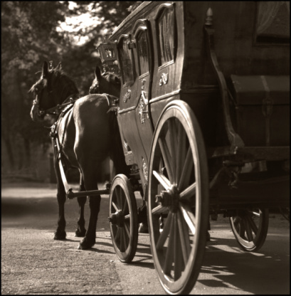 Horse-drawn carriage「Horse and buggy」:スマホ壁紙(2)