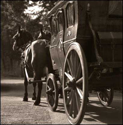 Horse「Horse and buggy」:スマホ壁紙(8)