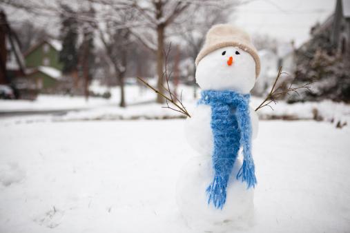 雪だるま「Snow Man/Woman」:スマホ壁紙(7)
