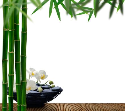Feng Shui「Bamboo Beauty」:スマホ壁紙(0)