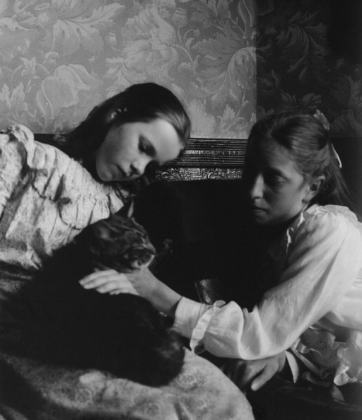 Wallpaper - Decor「Two Girls Stroking Cat」:写真・画像(17)[壁紙.com]