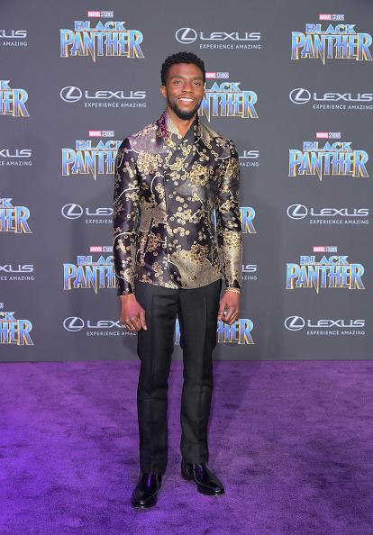 封切り「World Premiere of Marvel Studios' Black Panther, presented by Lexus」:写真・画像(17)[壁紙.com]