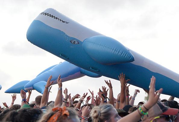 Aquatic Mammal「2017 Hangout Music Festival - Day 1」:写真・画像(8)[壁紙.com]