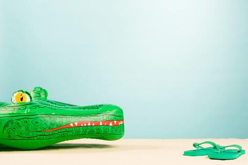 Flip-Flop「Inflatable crocodile and flip flops」:スマホ壁紙(17)