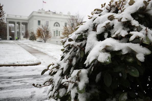 Washington DC「First Snow Fall Of Season Coats Washington, D.C.」:写真・画像(3)[壁紙.com]