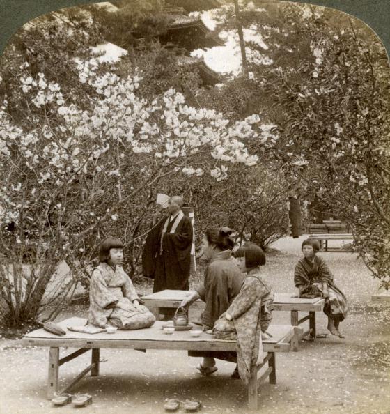 Picnic Table「A family enjoying a picnic under the cherry blossoms, Omuro Gosho, Kyoto, Japan, 1904.Artist: Underwood & Underwood」:写真・画像(10)[壁紙.com]