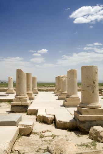 Iranian Culture「Iran, Shiraz, ruins of columns at Pasargadae」:スマホ壁紙(16)