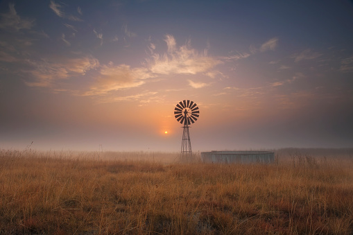 ローアングル「Landscape of a windmill in the mist at sunrise of a remote farm in the Free State Province, South Africa」:スマホ壁紙(8)