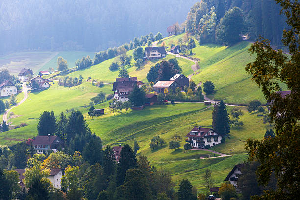 Landscape of Houses on Mountain in Black Forest:スマホ壁紙(壁紙.com)