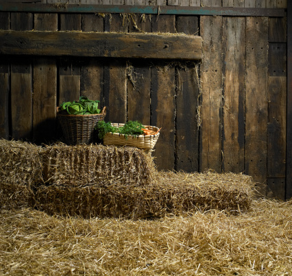 Agricultural Building「Baskets of cabbages and carrots on hay bales in barn」:スマホ壁紙(17)