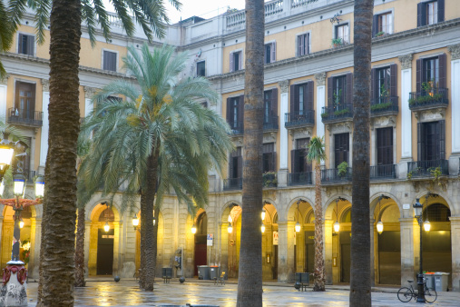 Barcelona - Spain「Spain, Barcelona, Placa Real, palm trees in courtyard」:スマホ壁紙(19)