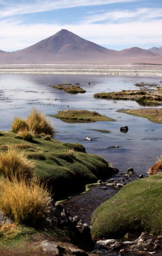 Wilderness Area「Laguna Colorada」:スマホ壁紙(19)