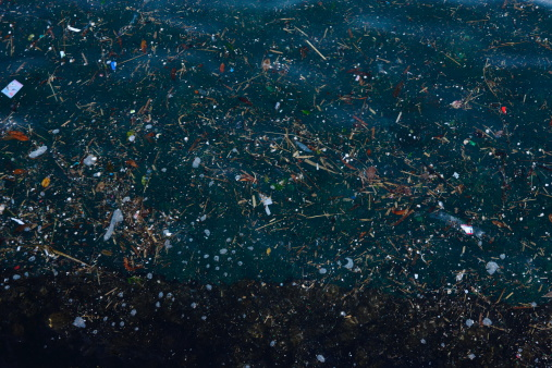 Pacific Ocean「Garbage floating on the surface of sea」:スマホ壁紙(6)